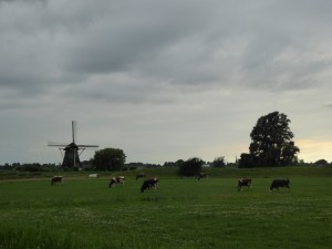 Campagne hollandaise 4