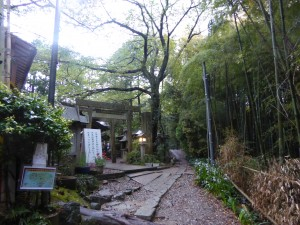 Sanctuaire Fushiminari, Kyoto